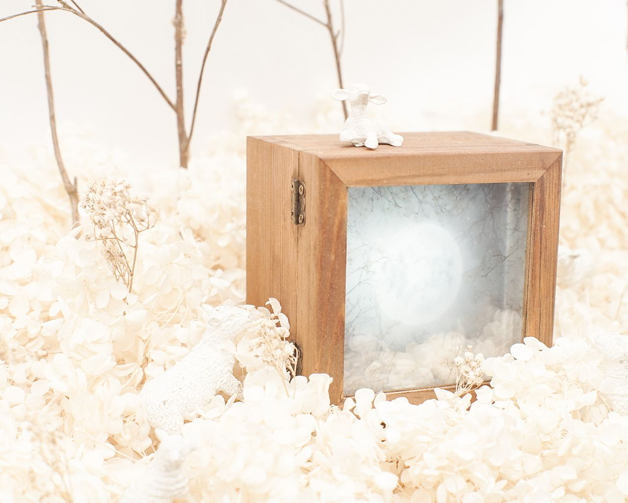 (SOLD OUT) 月蒝夜燈工作坊 Full Moon Night Lamp Workshop